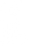 154. wheelchair sports